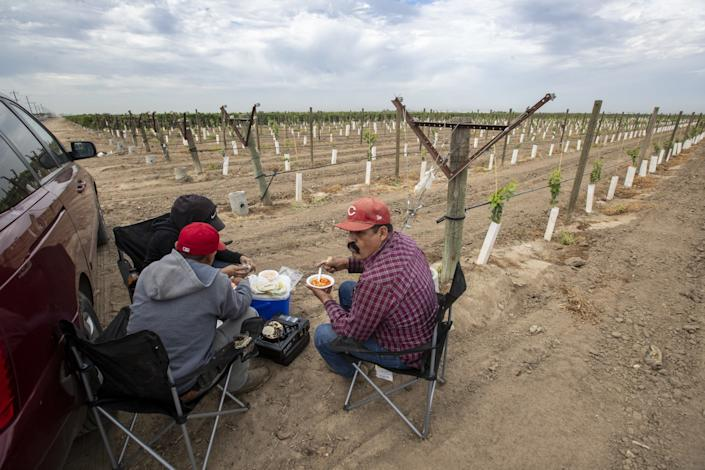 Farmworkers having lunch in a field on Thursday in Delano, Calif.