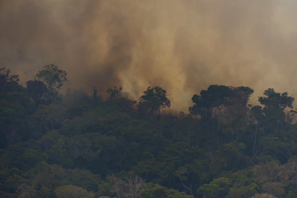 Fire consumes the jungle near Porto Velho, Brazil, Friday, Aug. 23, 2019. Brazilian state experts have reported a record of nearly 77,000 wildfires across the country so far this year, up 85% over the same period in 2018. Brazil contains about 60% of the Amazon rainforest, whose degradation could have severe consequences for global climate and rainfall. (AP Photo/Victor R. Caivano)