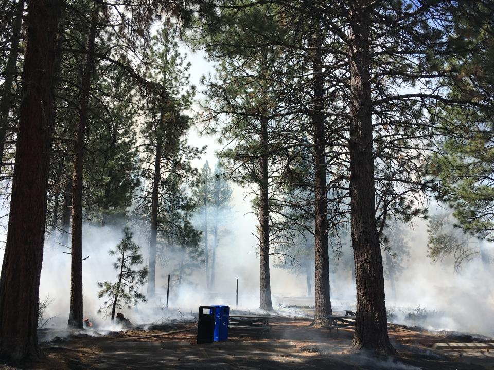 In this May 14, 2021, photo provided by the High Desert Museum, U.S. Forest Service firefighters carry out a prescribed burn on the grounds of the High Desert Museum, near Bend, Oregon. The prescribed burn is part of a massive effort in wildlands across the West to prepare for a fire season that follows the worst one on record. (Heidi Hagemeier/High Desert Museum via AP)