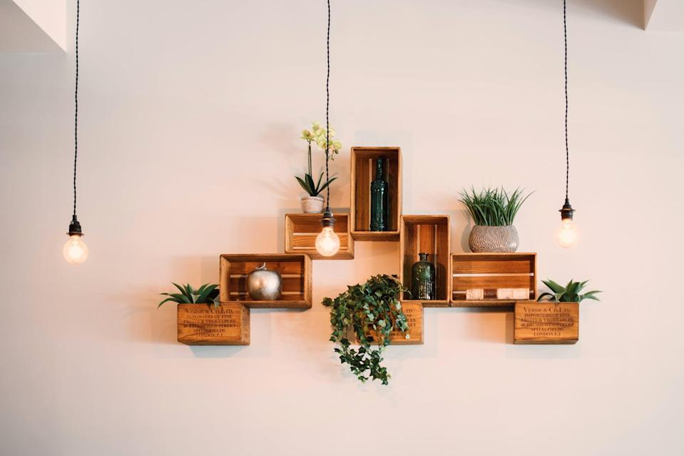 """<p>Plants are one of the easiest, cheapest ways to breathe life, literally, into a space. Houseplants are affordable, adorable, and come in a wide variety of shapes, colors, textures and even smells. Plus, they <a href=""""https://www.popsugar.com/home/best-indoor-plants-for-bedrooms-48245257"""" class=""""link rapid-noclick-resp"""" rel=""""nofollow noopener"""" target=""""_blank"""" data-ylk=""""slk:improve your indoor air quality"""">improve your indoor air quality</a>, and their pots are a great way to add color to a room.</p>"""