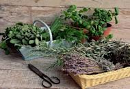 """<p>Even if your """"garden"""" is a few pots on a balcony or patio, growing things is good for us! Besides adding zest to our cooking, many modern drugs, such as aspirin, are derived from plants. """"Over time, we've found many plants are effective for nutrition, for adding spice to foods, and also for healing us,"""" says vice president for botanical science at the <a href=""""https://www.nybg.org/"""" rel=""""nofollow noopener"""" target=""""_blank"""" data-ylk=""""slk:New York Botanical Garden"""" class=""""link rapid-noclick-resp"""">New York Botanical Garden</a>, Michael Balick, PhD. """"There's also a positive mental health aspect to gardening."""" More and more studies show that gardening can help you <a href=""""https://www.sciencedirect.com/science/article/pii/S2211335516301401"""" rel=""""nofollow noopener"""" target=""""_blank"""" data-ylk=""""slk:deal with anxiety and depression"""" class=""""link rapid-noclick-resp"""">deal with anxiety and depression</a>, <a href=""""https://ajph.aphapublications.org/doi/full/10.2105/AJPH.2012.301009"""" rel=""""nofollow noopener"""" target=""""_blank"""" data-ylk=""""slk:manage weight"""" class=""""link rapid-noclick-resp"""">manage weight</a>, and <a href=""""http://ghk.h-cdn.co/assets/cm/15/11/54ff77204744d_-_hbp_low.pdf"""" rel=""""nofollow noopener"""" target=""""_blank"""" data-ylk=""""slk:control blood pressure"""" class=""""link rapid-noclick-resp"""">control blood pressure</a>. Plus, who doesn't need more fresh air and sunshine, especially these days?</p><p>The great thing about most herbs is that most do just as well in pots as in ground. Some healing plants are <a href=""""https://www.countryliving.com/gardening/garden-ideas/a24843987/annual-vs-perennial/"""" rel=""""nofollow noopener"""" target=""""_blank"""" data-ylk=""""slk:perennial"""" class=""""link rapid-noclick-resp"""">perennial</a>, which means they'll return year after year. In many parts of the country, even the snowy North, you'll be able to harvest the hardier herbs for much of the year. Many are easy to dry or freeze so you can use them year-round in cooking. In his book, <em><a href=""""https://www.amazon.com/"""