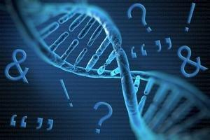 Punctuating Messages Encoded in Human Genome With Transposable Elements