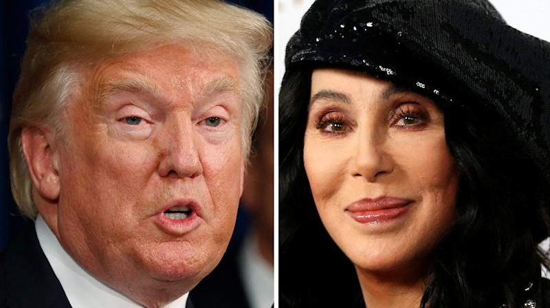 Cher Taunts Donald Trump Who 'Doesn't Have 2 Brain Cells To Rub Together'