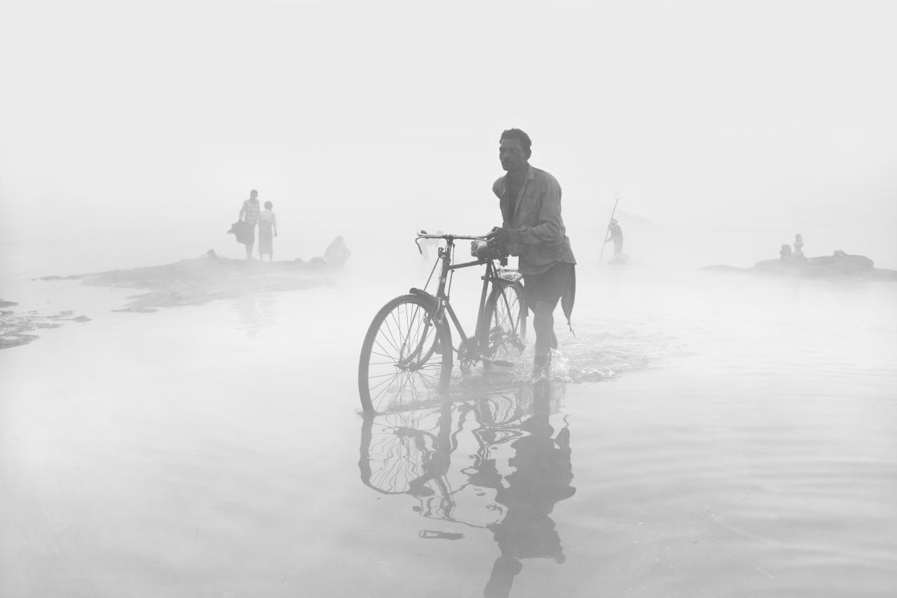 <p>Journey through the fog' – Rajesh Dhar: This dawn photo was taken in January in Madhya Pradesh, India, where heavy fogs are often experienced at that time of year. </p>