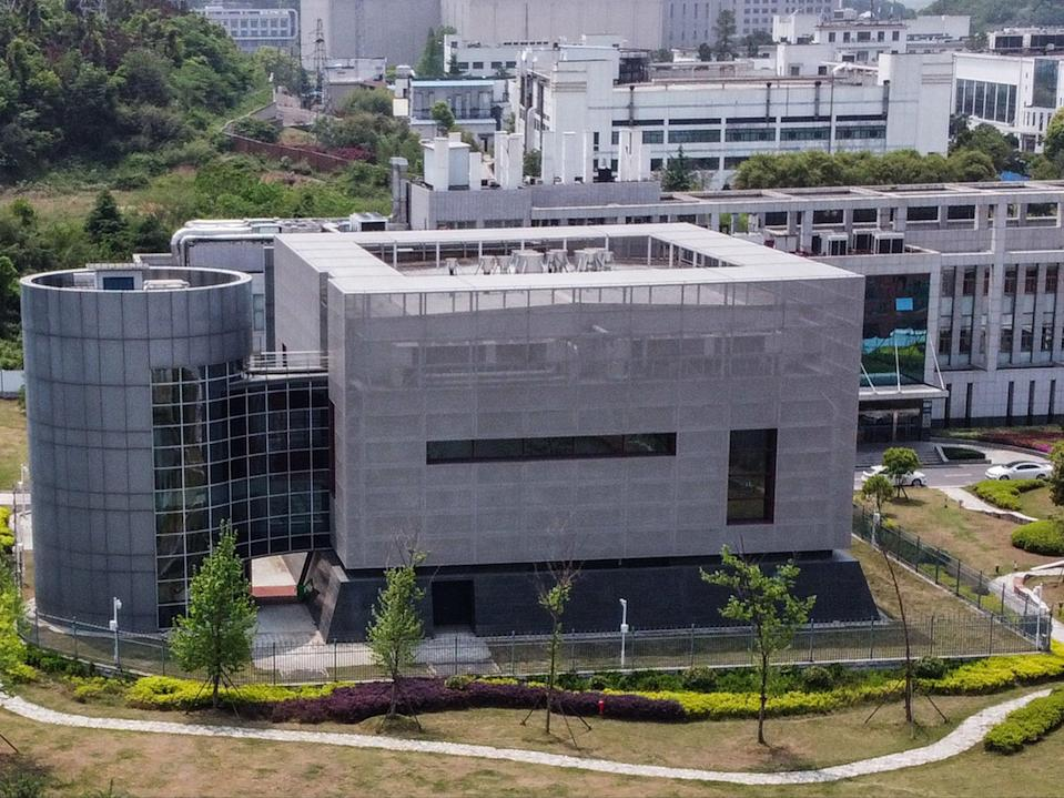 <p>The P4 laboratory at the Wuhan Institute of Virology, which is among a handful of labs around the world cleared to handle dangerous viruses that pose a high risk of person-to-person transmission</p> (HECTOR RETAMAL/AFP via Getty Images)