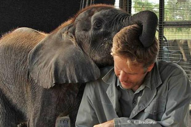 mike-with-baby-elephant.jpg