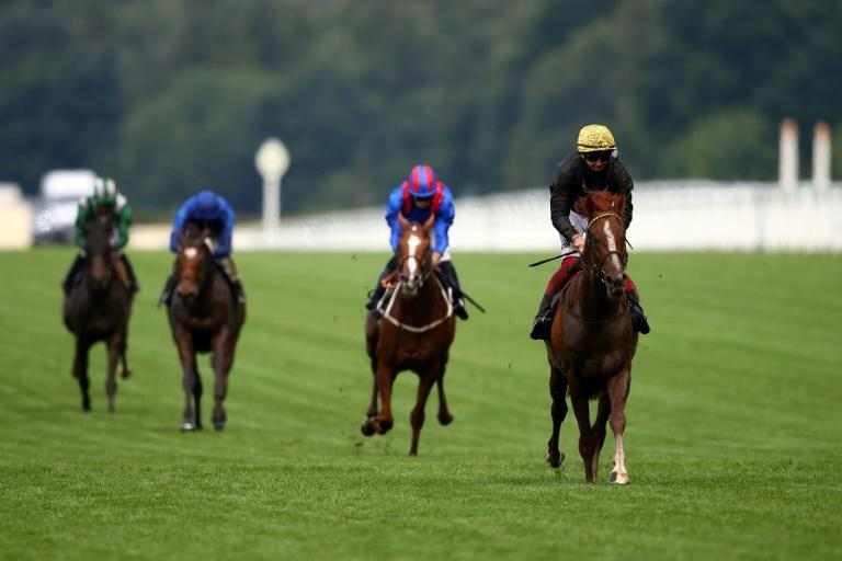 Bjorn Nielsen owner and breeder of three-time Ascot Gold Cup winner Stradivarius hinted that it might be the old warhorse's last run after he finished second in the Prix du Cadran (AFP/Julian Finney)