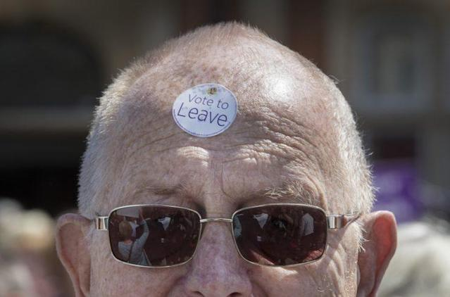 A UKIP supporter during last year's Brexit referendum (Rex)