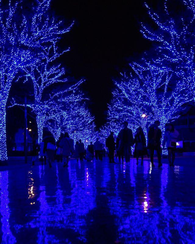 """<p>Tokyo is known for its """"winter illuminations,"""" when the majority of the city is decorated with colorful lights. The lights at the <a href=""""https://jw-webmagazine.com/caretta-shiodome-winter-illumination-2019-2020/"""" target=""""_blank"""">Shiodome</a>, a 47-story shopping complex, are some of the most impressive, and will make you feel like you've been transported to the magical winter wonderland of your dreams. The shopping districts in Tokyo are also always completely decked out for the holidays, so you can take in the festive lights while you peruse the shops and grab a bite to eat. </p><p><a class=""""body-btn-link"""" href=""""https://fave.co/33HSNtt"""" target=""""_blank"""">Book</a> <em><strong>hotels in Tokyo, Japan</strong></em></p><p><a href=""""https://www.instagram.com/p/BrAa2LSF4X7/"""">See the original post on Instagram</a></p><p><a href=""""https://www.instagram.com/p/BrAa2LSF4X7/"""">See the original post on Instagram</a></p><p><a href=""""https://www.instagram.com/p/BrAa2LSF4X7/"""">See the original post on Instagram</a></p><p><a href=""""https://www.instagram.com/p/BrAa2LSF4X7/"""">See the original post on Instagram</a></p><p><a href=""""https://www.instagram.com/p/BrAa2LSF4X7/"""">See the original post on Instagram</a></p><p><a href=""""https://www.instagram.com/p/BrAa2LSF4X7/"""">See the original post on Instagram</a></p><p><a href=""""https://www.instagram.com/p/BrAa2LSF4X7/"""">See the original post on Instagram</a></p><p><a href=""""https://www.instagram.com/p/BrAa2LSF4X7/"""">See the original post on Instagram</a></p><p><a href=""""https://www.instagram.com/p/BrAa2LSF4X7/"""">See the original post on Instagram</a></p><p><a href=""""https://www.instagram.com/p/BrAa2LSF4X7/"""">See the original post on Instagram</a></p><p><a href=""""https://www.instagram.com/p/BrAa2LSF4X7/"""">See the original post on Instagram</a></p><p><a href=""""https://www.instagram.com/p/BrAa2LSF4X7/"""">See the original post on Instagram</a></p><p><a href=""""https://www.instagram.com/p/BrAa2LSF4X7/"""">See the original post on Instagram</a></p><p><a href=""""https://www."""