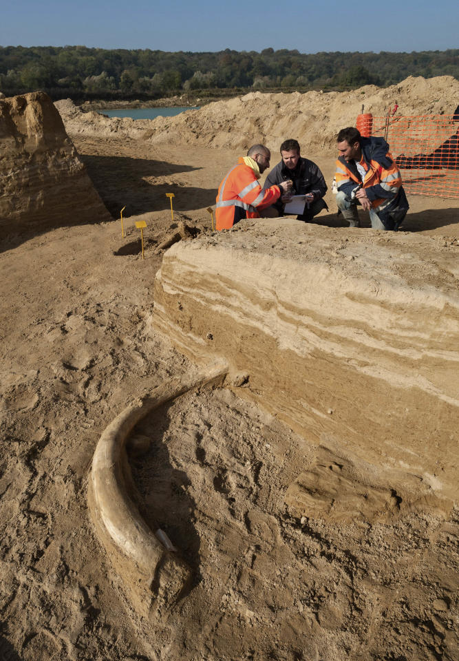 "This photo dated Oct. 30, 2012, released Wednesday Nov. 7, 2012, by archeological group Inrap, shows unidentified archeologists working along the Changis-sur-Marne riverbank about 30 miles (50 Km) east of Paris, after unearthing the rare near complete skeleton of a mammoth, which has been christened ""Helmut"". The remains which include four connected vertebrae and a complete pelvis, dating back some 200,000-500,000 years ago, were discovered by accident during excavations at an Ancient Roman site.(AP Photo/Denis Gliksman/Inrap)"