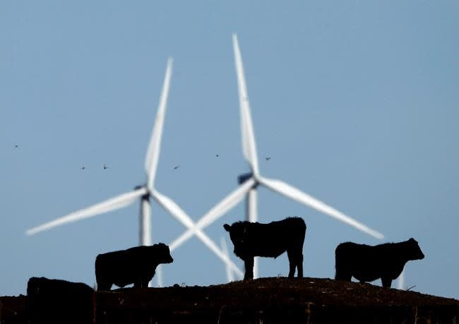 Wind power association pursues partnership with solar, other technologies