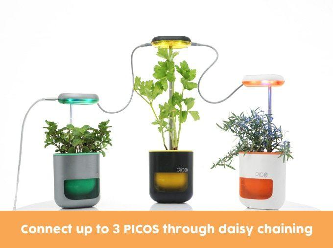 Daisy-chain mutiple PICO modules together to build yourself an ultra-smart mini garden.