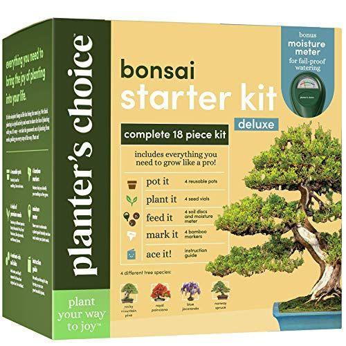"""<p><strong>Planters' Choice</strong></p><p>amazon.com</p><p><strong>$29.99</strong></p><p><a href=""""https://www.amazon.com/dp/B081B6XDB2?tag=syn-yahoo-20&ascsubtag=%5Bartid%7C1782.g.3262%5Bsrc%7Cyahoo-us"""" rel=""""nofollow noopener"""" target=""""_blank"""" data-ylk=""""slk:BUY NOW"""" class=""""link rapid-noclick-resp"""">BUY NOW</a></p><p>Test out that green thumb of yours.</p>"""