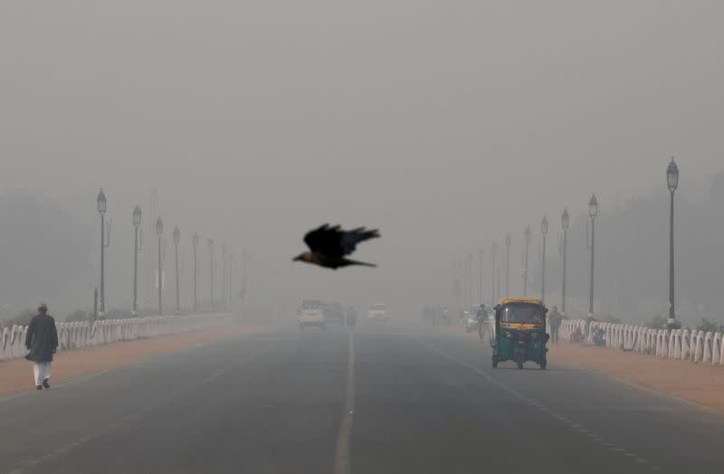 FILE PHOTO: A bird flies amidst smog near India's Presidential Palace in New Delhi