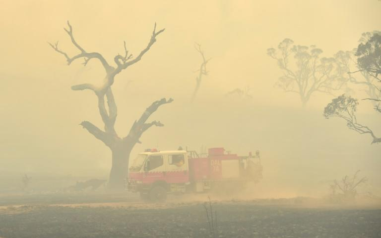 Bushfires have scorched large swathes of Australia in recent months (AFP Photo/PETER PARKS)