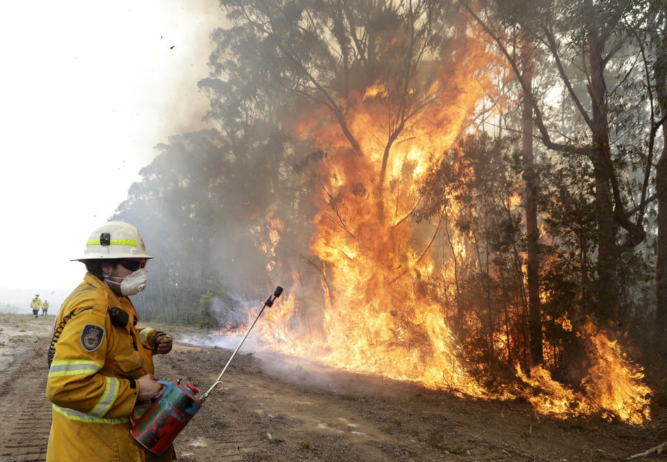 A firefighters backs away from the flames after lighting a controlled burn near Tomerong, Australia, Wednesday, Jan. 8, 2020, in an effort to contain a larger fire nearby. Around 2,300 firefighters in New South Wales state were making the most of relatively benign conditions by frantically consolidating containment lines around more than 110 blazes and patrolling for lightning strikes, state Rural Fire Service Commissioner Shane Fitzsimmons said. (AP Photo/Rick Rycroft)
