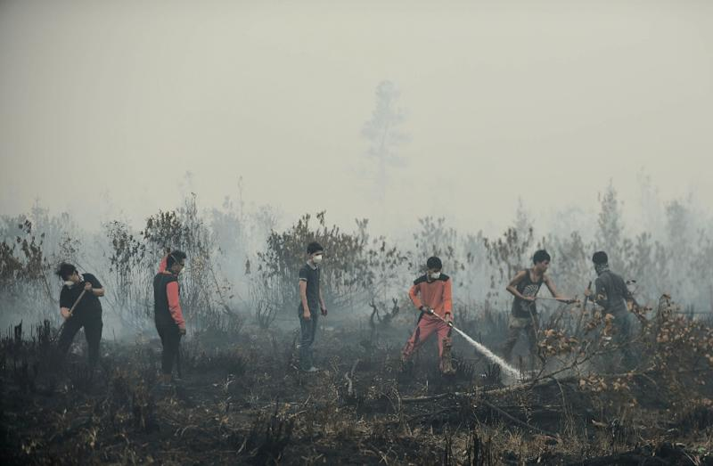 Volunteers attempt to extinguish a peatland fire on the outskirts of Palangkaraya, a city of 240,000 in Indonesia's central Kalimantan province, on October 27, 2015 (AFP Photo/Bay Ismoyo)