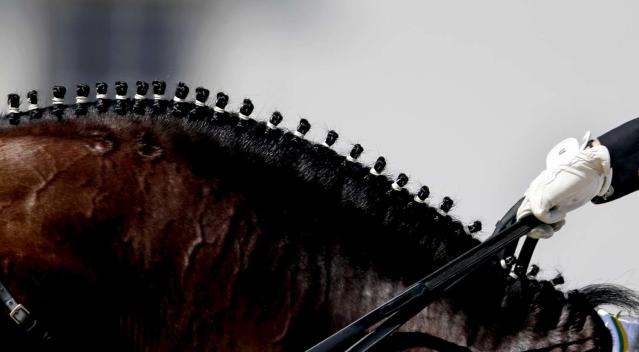 Braids decorate the mane of Pastor, ridden by Luiza Tavares de Almeida, of Brazil, as they compete in the equestrian dressage at the 2012 Summer Olympics, Thursday, Aug. 2, 2012, in London. (AP Photo/David Goldman)