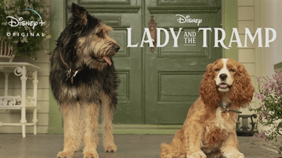 Disney Shares New Image From Lady And The Tramp Live Action Remake