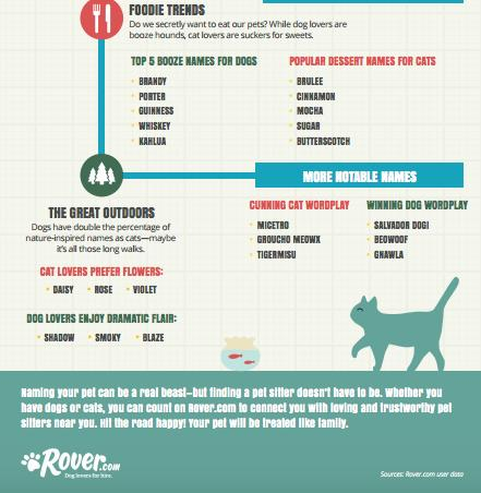 how to get ants out of dog food
