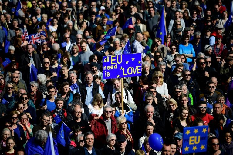 People attend a pro-Europe demonstration in Berlin as a growing number of Germans fed up with eurosceptics hogging the headlines march to express their support for the EU