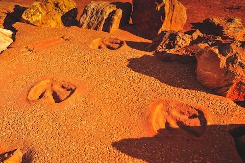 Kimberley is home to the world's largest dinosaur footprint - Credit: Getty