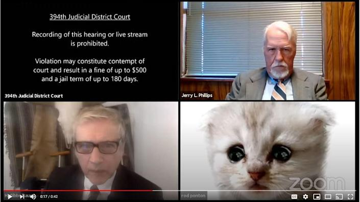 A Texas attorney showed up to a virtual hearing on Zoom with a cat filter on.