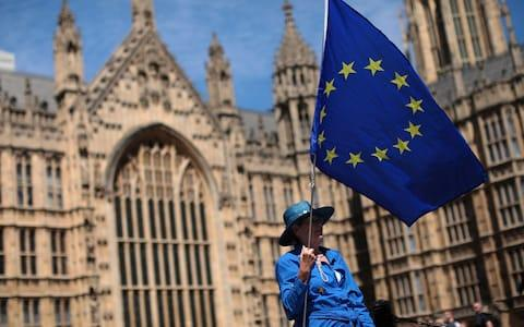 An anti-Brexit demonstrator holds an EU flag