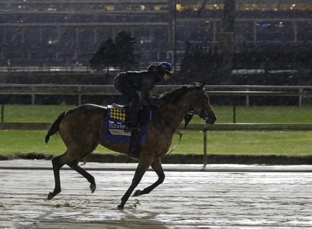 Exercise rider Jose Contreras rides Marley's Freedom during morning workouts for the Breeders Cup horse races at Churchill Downs, Thursday, Nov. 1, 2018, in Louisville, Ky. (AP Photo/Darron Cummings)