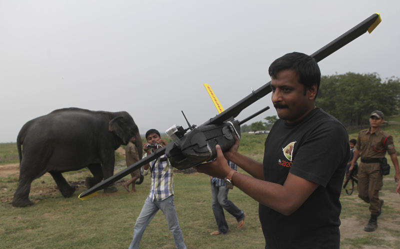 A mahout walks past with an elephant used for tourist rides as a World Wide Fund for Nature (WWF) official carries an unmanned aircraft or drone before flying them at the Kaziranga National Park at Kaziranga in Assam state, India, Monday, April 8, 2013. Wildlife authorities used drones on Monday for aerial surveillance of the sprawling natural game park in northeastern India to protect the one-horned rhinoceros from armed poachers. The drones will be flown at regular intervals to prevent rampant poaching in the park located in the remote Indian state of Assam. The drones are equipped with cameras and will be monitored by security guards, who find it difficult to guard the whole 480-square kilometer (185-square mile) reserve. (AP Photo/Anupam Nath)