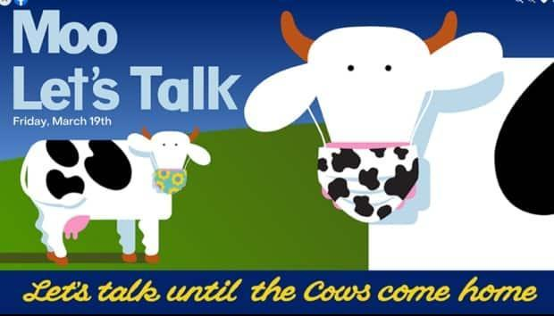 Purchase a pint to make a point for mental health is the theme of this year's Moo Let's Talk campaign, a fundraiser for mental health by Cows Ice Cream.  (Cows/Facebook - image credit)