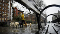 Dogs are walked along Brooklyn Heights Promenade during a rainy day, Friday April 5, 2019, in New York. The promenade makes up the top deck overhang of a deteriorating Brooklyn-Queens Expressway and the city's plans for repairs has drawn neighborhood protest, since it calls for a temporary six lane highway on the promenade. (AP Photo/Bebeto Matthews)