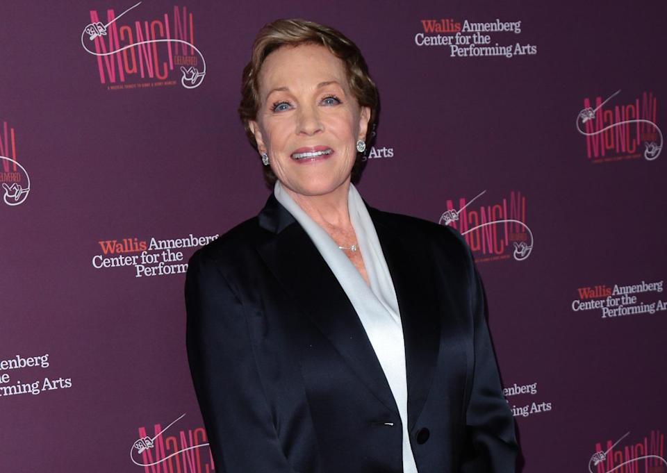 Julie Andrews, photographed in April 2017 (Credit: Guillermo Proano/WENN.com)