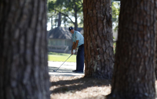 Matt Kuchar lines up his approach shot through the pine trees on 15 during the final round of the RBC Heritage golf tournament at Harbour Town Golf Links on Hilton Head Island, S.C., Sunday, April 21, 2019. Kuchar came in second place at 11- under par. (AP Photo/Mic Smith)
