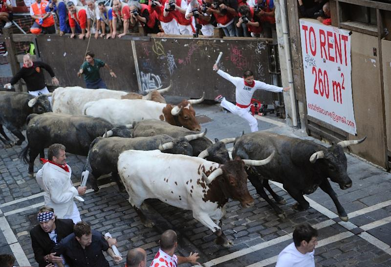 Participants run in front of Miura's bulls during the last bull-run of the San Fermin Festival in Pamplona, northern Spain, on July 14, 2015