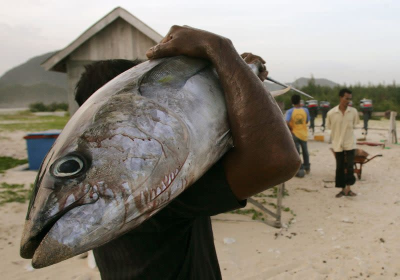 FILE PHOTO: Fisherman carries tuna fish from his catch at harbour in Lampuuk on outskirts of Banda Aceh