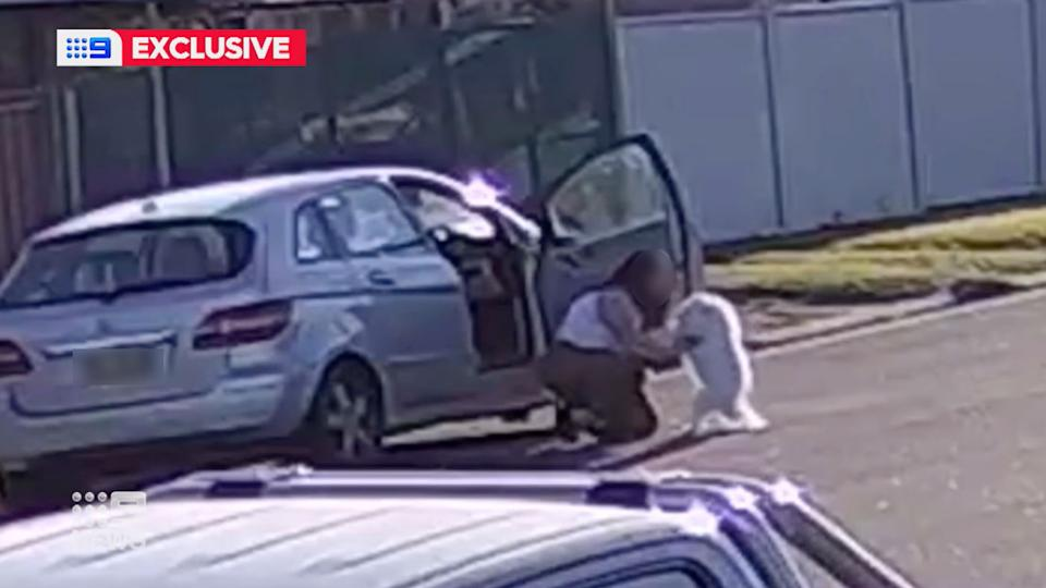Pictured is the woman allegedly picking up Atlas.