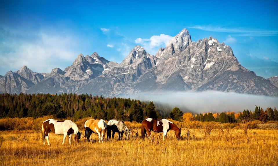 """<p>Jackson Hole has long been the playground for a certain kind of crowd: one percenters who prefer a more down-to-earth and back-to-nature ruggedness over the glitz and glam of other alpine towns (like Aspen). It's also one of the most gorgeous places in the country—surrounded by the towering Grand Teton mountain range, there are breathtaking vistas from just about anywhere, not to mention all the wildlife, the wide open spaces, the magnificent homes, and the outdoor activities, from hiking to horseback riding. Plus, Grand Teton National Park isn't its only megawatt draw. There is also Yellowstone National Park, which became the country's first national park in 1872. Its famous Grand Prismatic Spring and soaring Old Faithful Geyser are just a two hour drive away. If traveling with friends or family, stay at the 8-key <a href=""""https://calderahouse.com/"""" rel=""""nofollow noopener"""" target=""""_blank"""" data-ylk=""""slk:Caldera House"""" class=""""link rapid-noclick-resp"""">Caldera House</a>, where every two- or four-bedroom suite is impeccably designed to feel like a <a href=""""https://www.townandcountrymag.com/leisure/travel-guide/a28775767/caldera-house-jackson-hole-wellness-weekend/"""" rel=""""nofollow noopener"""" target=""""_blank"""" data-ylk=""""slk:palatial pied-a-terre"""" class=""""link rapid-noclick-resp"""">palatial pied-a-terre</a>. Couples should head to the <a href=""""https://www.aman.com/resorts/amangani"""" rel=""""nofollow noopener"""" target=""""_blank"""" data-ylk=""""slk:Amangani"""" class=""""link rapid-noclick-resp"""">Amangani</a>, which has unbeatable views of Snake River Valley and the Tetons, and where every suite is outfitted with a fireplace and private balcony. </p><p><a class=""""link rapid-noclick-resp"""" href=""""https://go.redirectingat.com?id=74968X1596630&url=https%3A%2F%2Fwww.tripadvisor.com%2FHotel_Review-g60562-d15130128-Reviews-Caldera_House-Teton_Village_Jackson_Hole_Wyoming.html&sref=https%3A%2F%2Fwww.townandcountrymag.com%2Fleisure%2Ftravel-guide%2Fg10370949%2Fbest-places-to-travel-in-september%2F"""" rel=""""nofo"""