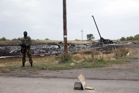 Pro-Russian separatist stands on guard at the crash site of Malaysia Airlines Flight MH17, near the settlement of Grabovo in the Donetsk region