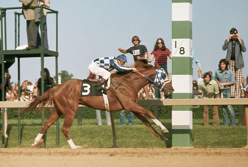 <p>Winning the highly sought-after Triple Crown, Secretariat became the first racehorse in 25 years to take the honor, even winning his race by 31 lengths.</p>