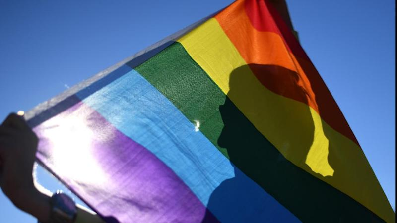 Senators have been told observers should be given access to all aspects of the postal survey.