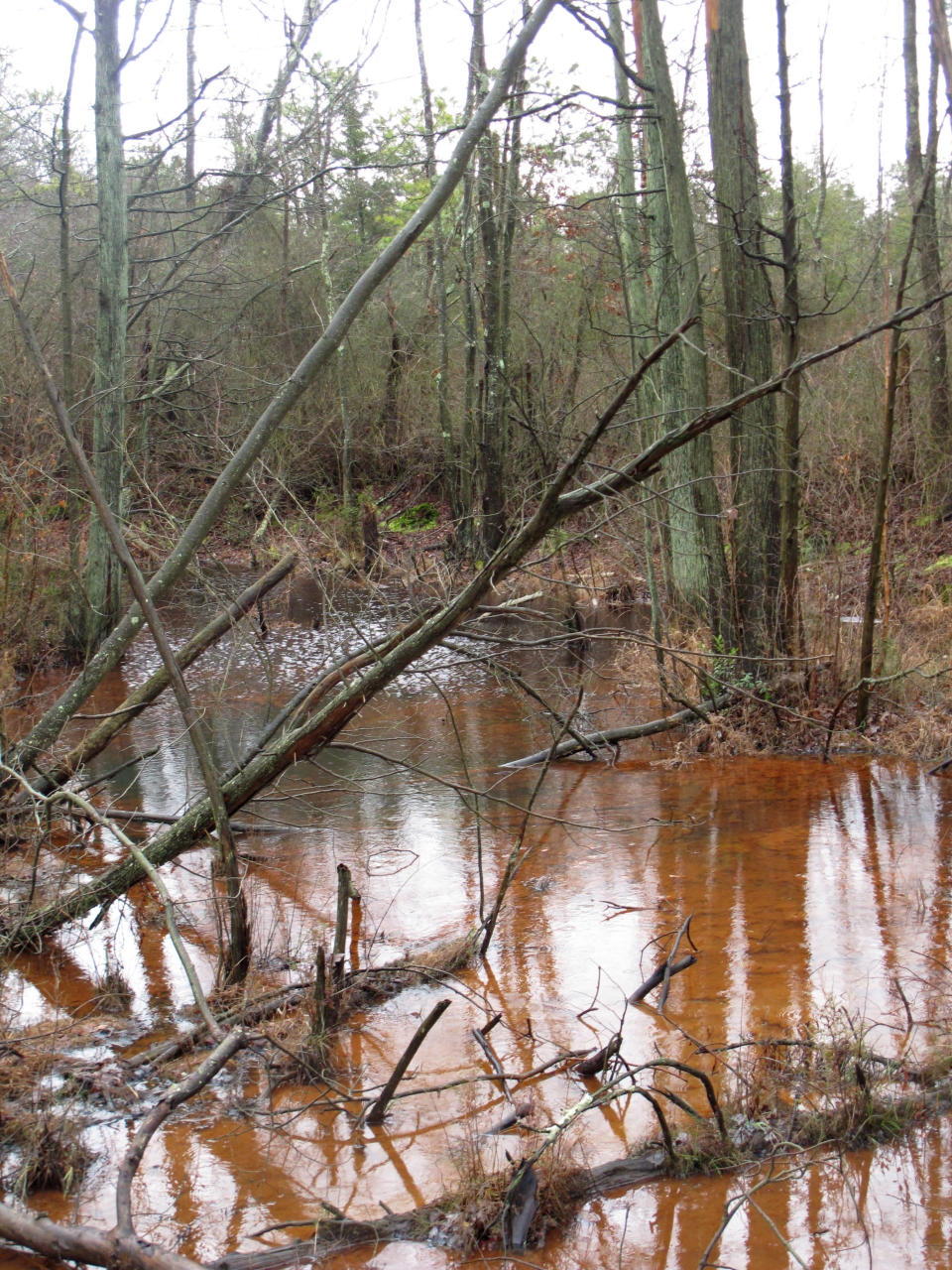 """FILE - This Jan. 6, 2014 file photo shows a stream flowing through the New Jersey Pinelands region in Lakehurst, N.J. On Tuesday, Nov. 10, 2020, New Jersey officials sued three companies, demanding that they clean up chemical contamination of the environment, including waterways, in West Deptford and Edgewater, in an effort to force chemical companies to pay for decades of contamination of waterways by so-called """"forever chemicals"""" used to stain-proof clothing and produce non-stick cookware that have become ubiquitous in everyday life. (AP Photo/Wayne Parry, File)"""