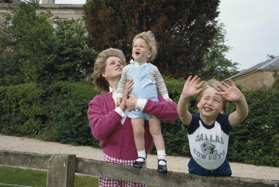 <p>Princess Diana plays outside with her young sons, Prince William and Prince Harry, while relaxing at their country home Highgrove House in 1986. </p>