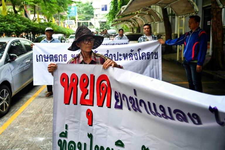 Representatives of Thai farmers arrive at the Ministry of Industry in Bangkok to support certain pesticides, but the National Hazardous Substances Committee voted to ban glyphosate and the chemicals paraquat and chlorpyrifos, officials said (AFP Photo/Lillian SUWANRUMPHA)