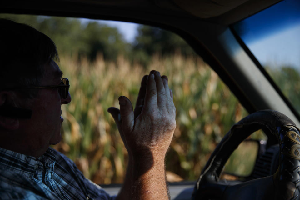"""Richard Wilkins describes how his struggling corn crop needs rain as he sits in his truck next to a cornfield in his Greenwood, Del., farm Monday, July 29, 2019. """"We're trying to do what we can,"""" said Wilkins, who shuns the federal farm habitat programs, but hopes that leaving what weeds and wildflowers survive in hard-to-mow areas helps wildlife. (AP Photo/Carolyn Kaster)"""