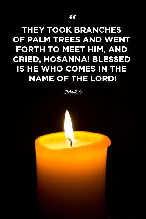 """<p>""""They took branches of palm trees and went forth to meet him, and cried, Hosanna! Blessed is he who comes in the name of the Lord!""""</p>"""