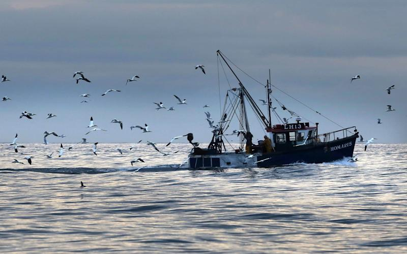 Scottish fishermen on the east coast pick up lobster pots near Bass - Credit: David Cheskin