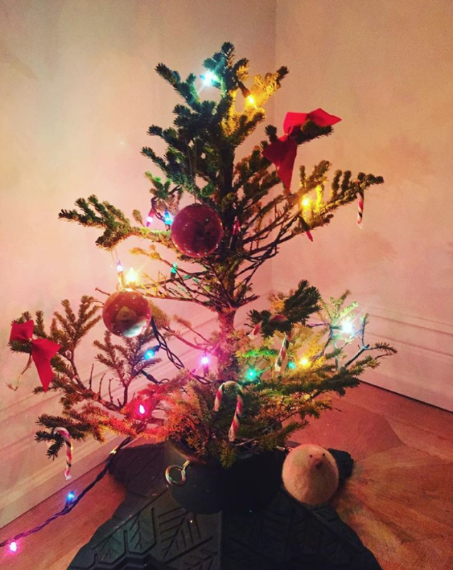 "<p>This is what happens, ""When you let your three year old pick out the tree,"" Bilson joked. But we bet 3-year-old Briar Rose, the daughter she shares with ex-husband Hayden Christensen, was thrilled! (Photo: <a href=""https://www.instagram.com/p/BckTYIwAj9Z/?hl=en&taken-by=rachelbilson"" rel=""nofollow noopener"" target=""_blank"" data-ylk=""slk:Rachel Bilson via Instragram"" class=""link rapid-noclick-resp"">Rachel Bilson via Instragram</a>) </p>"