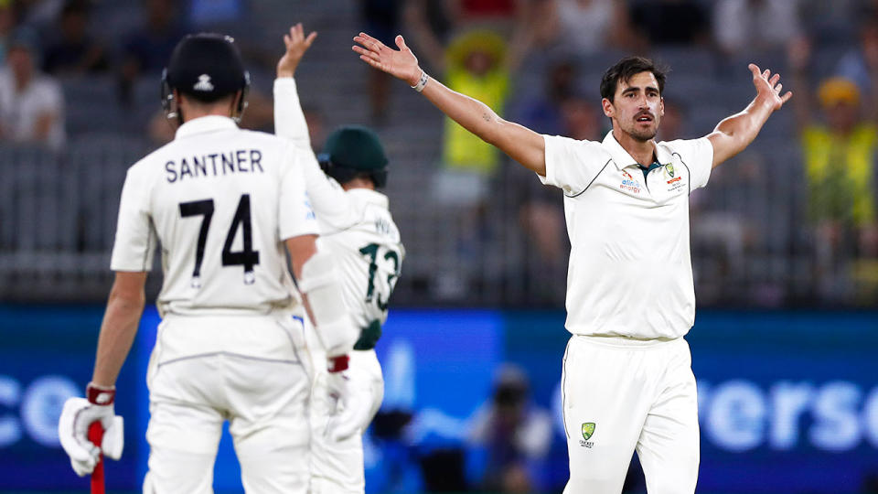 Mitchell Starc appeals for the wicket of BJ Watling of New Zealand during day four of the First Test match in the series between Australia and New Zealand. (Photo by Ryan Pierse/Getty Images)