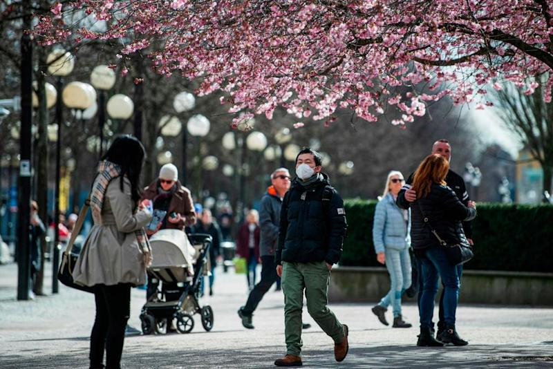 People walk among the cherry blossoms at Kungsträdgården in Stockholm